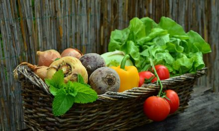 FORT OSAGE SCHOOL DISTRICT'S FARM TO FORT PROGRAM BRINGS FRESH PRODUCE TO STUDENTS