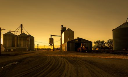 HIV/AIDS IN RURAL AMERICA: WHEN QUALITY OF LIFE AFFECTS ACCESS TO CARE