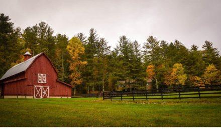 McCorkendale Farms: It's a Family Affair